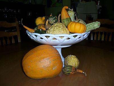 Gourdsgrowningarden