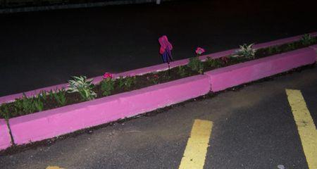 Pinkcurb