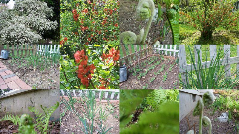 Springgreencollage