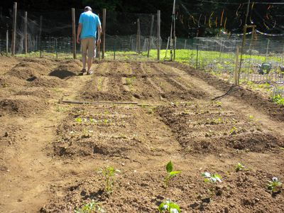 Communitygardenoutplot