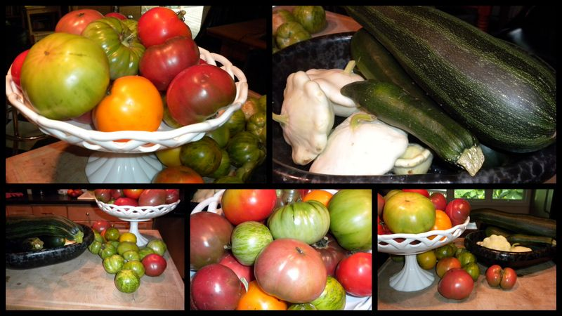 Heirlooms and zukes